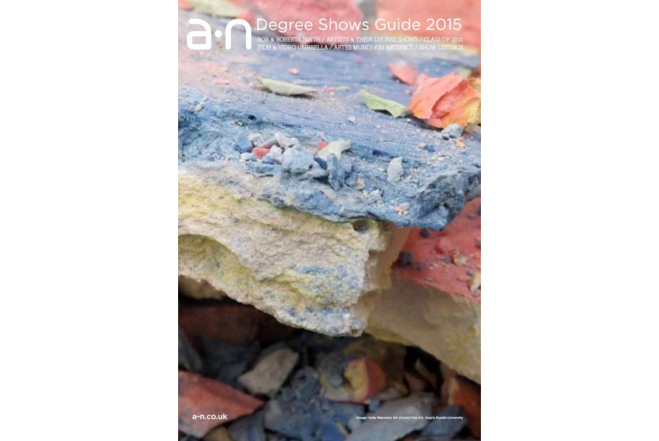 a-n Degree Shows Guide 2015