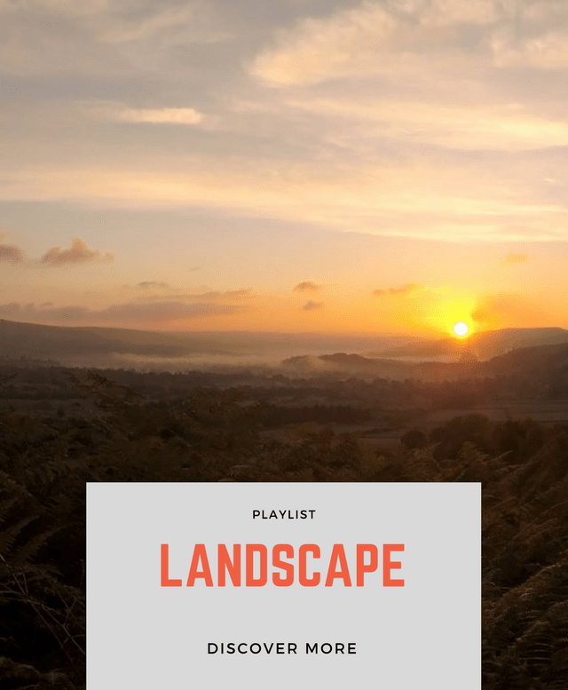 PLAYLIST: LANDSCAPE